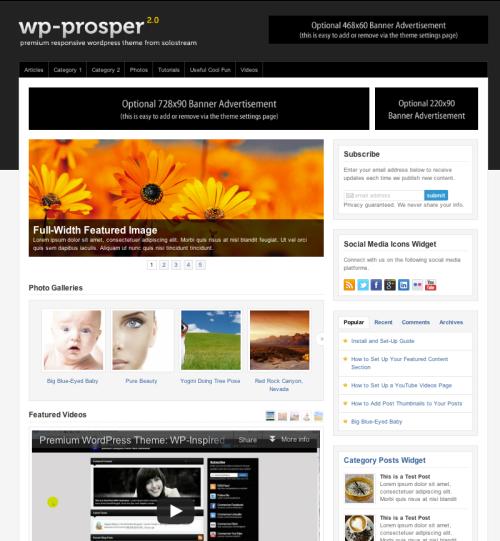 <h3>WP-Prosper</h3>