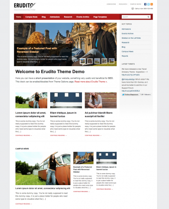 erudito-magazine-wordpress-theme